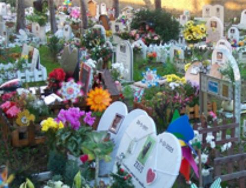 Funerali per gli animali, sepoltura o cremazione