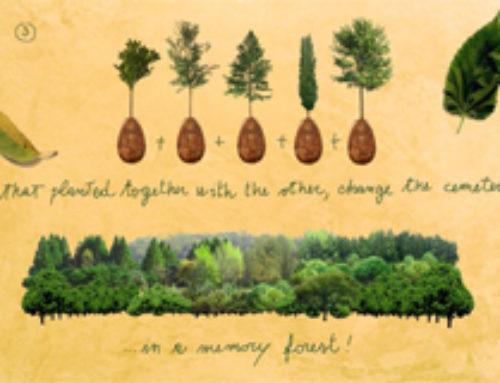 Capsula Mundi la nuova sepoltura che trasforma i defunti in alberi